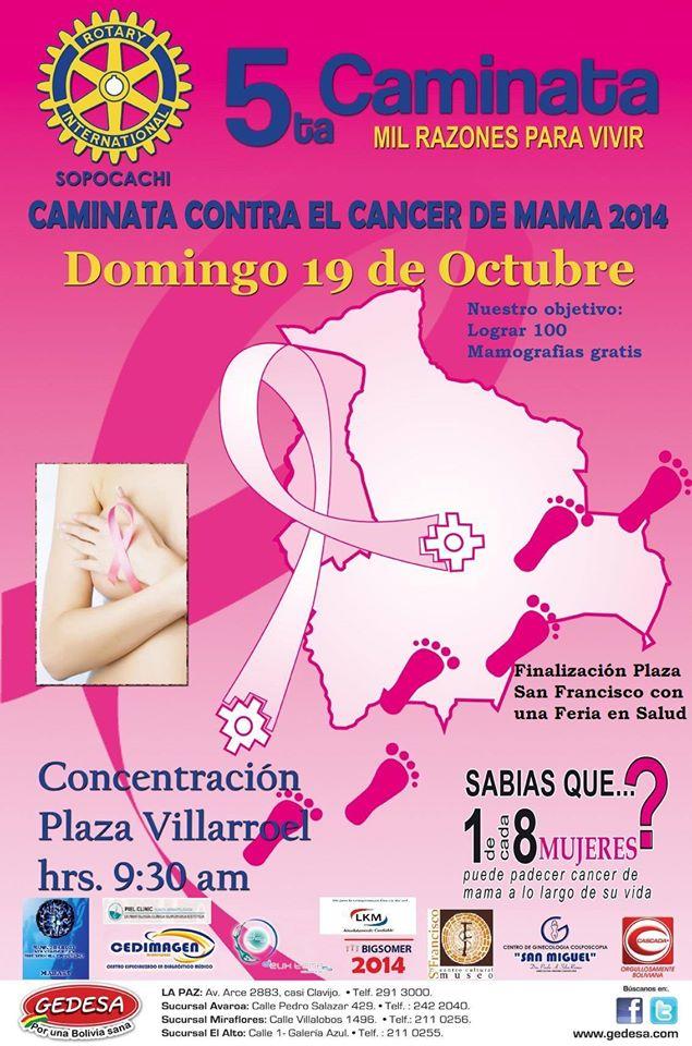afiche caminata cancer mama