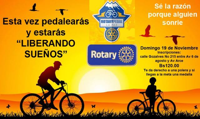 23517892_rotary pedal 2017